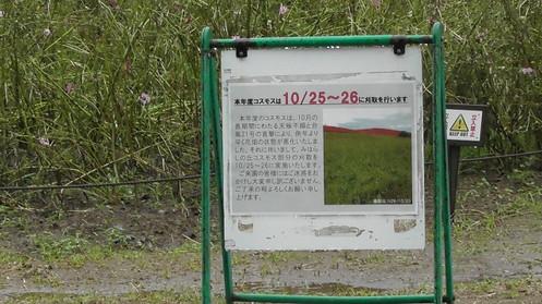 S1040016